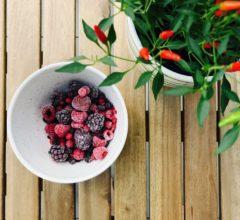 Aposte nas frutas congeladas para o verão